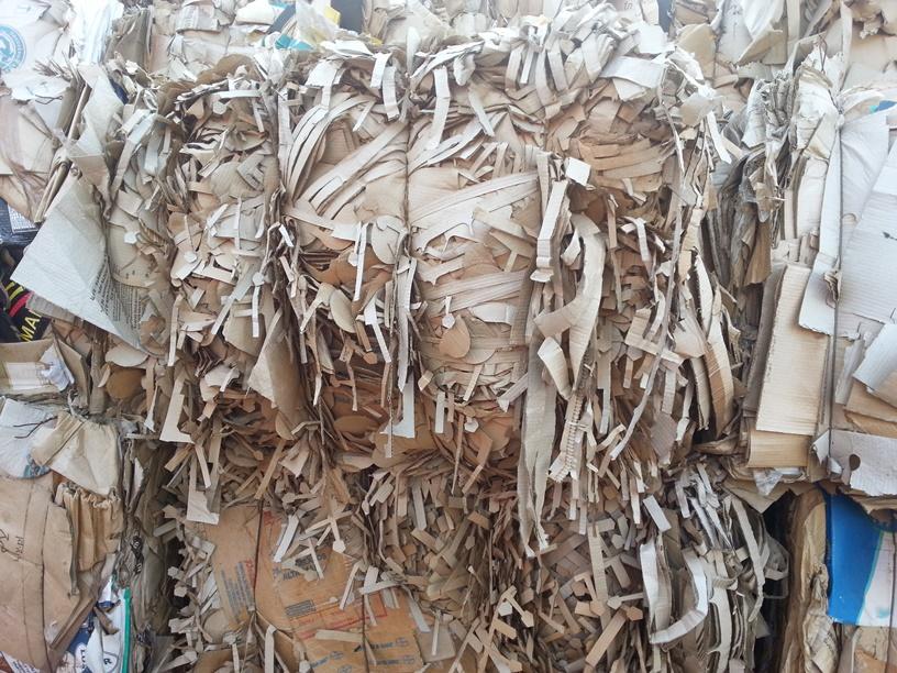 Макулатура гомель стоимость омск переработка макулатуры